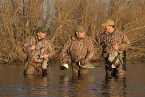 Avery waterfowlers
