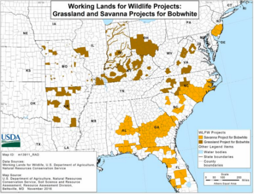 Working Lands for Wildlife Projects in the Southeast